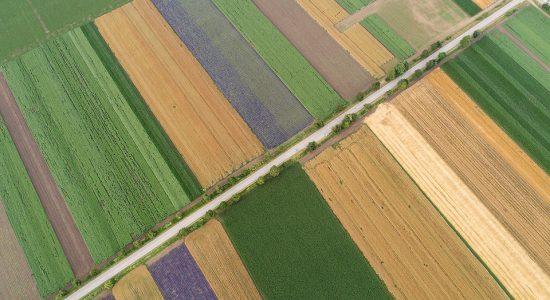 סוגי קרקעות בישראל